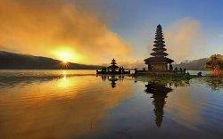 Best Bali Driver