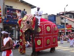 Ceylon Touristik and Travel - Private Day Tours