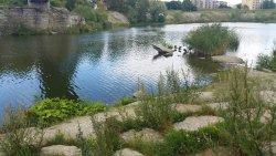Pae park