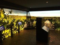 Musee du Vin Brotte Dégustation et Vente