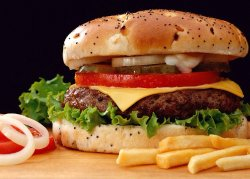 Comptoir du Burger