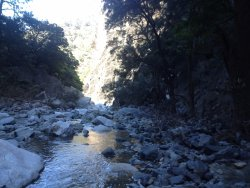 Bungonia State Conservation Area
