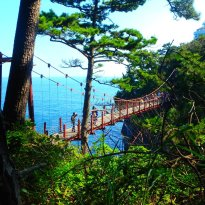 Jogasaki Suspension Bridge