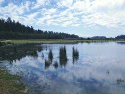 Reserva Nacional Lago Penuelas