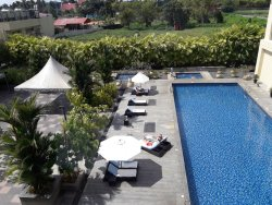 Swimming pool and lawns