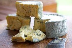 The Cheesemaking Workshop & Deli