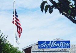 Daunt's Albatross Motel