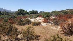 Ramona Grassland Preserve