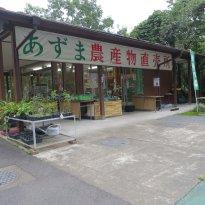 Tomihiro Museum