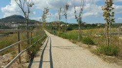 Via Verde Manacor-Arta