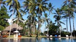 Het zwembad met links het restaurant