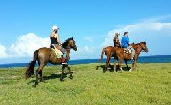 Atlantic Shores Riding Stables