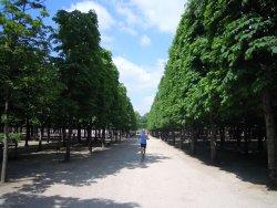Free Paris Running Tour