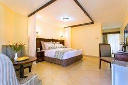 8 Executive Rooms