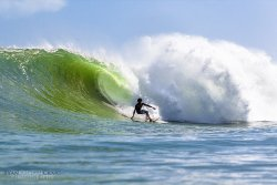 Surf the Jungle Surf School & Adventures