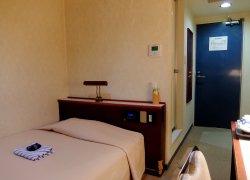 Town Hotel Murakami