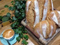 Organic sourdough made on site and artisan Italian coffee