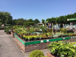Bellis Brothers Farm Shop and Garden Centre