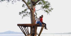 Urongo Tree House