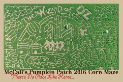 McCall's Pumpkin Patch