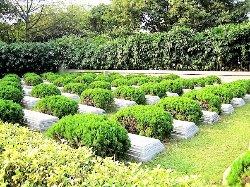 Huanghuagang Park