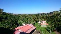 Tsou Ma Lai Farm
