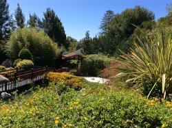Jardin Botanico Molino de Inca