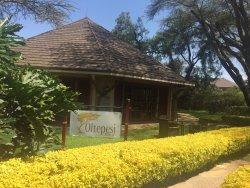 Best place to stay in Naivasha