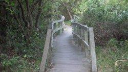 Nahoon Estuary Nature Reserve