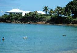 Main beach with Pelicans