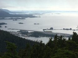 Harbor Mountain Trail