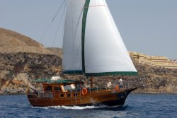 Paradise Sailing Experience Canary Boat Trips