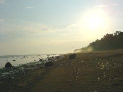 Памятник природы «Комаровский берег»