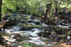 Huckaby Trail