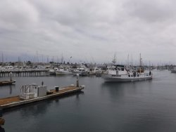 Point Loma Sportfishing