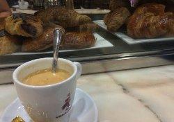 Cafe Veracruz - Riego de Agua