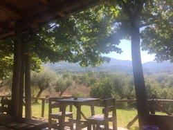 Agriturismo Masseria Campolerose Restaurant