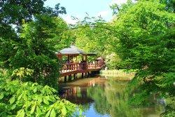 Japanese Garden - Szczytnicki Park