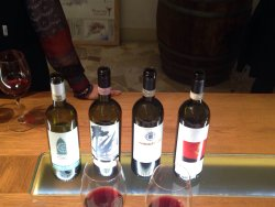 Tuscan Wine School in Florence