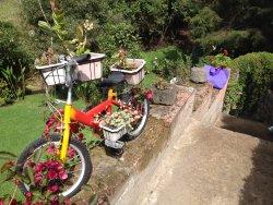 At Villa Doris in Nono, Pichincha province, Ecuador