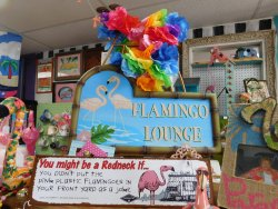 The Unofficial Florida Flamingo Museum & Coconut Head Emporium