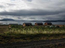 Lake Thingvellir Cottages