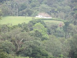 View from the Homestay owner's plantation
