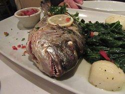 Tavira Restaurant -- Fresh Grilled Dorado special - $30.00