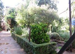 Jardin Botanico de la Universidad de Granada