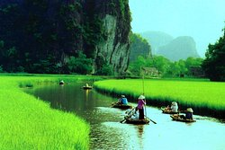 Hoa Lu- Tam Coc Day Tours