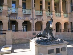 Sydney Hospital - Guided Historical Tours