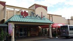 Spa Resort Ogoto Agaryanse