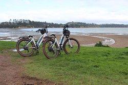 Bikes & Barbers Ecycles NZ
