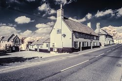 The Alderton Swan